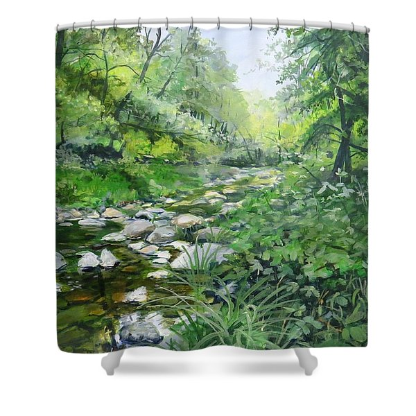 Another Look Shower Curtain