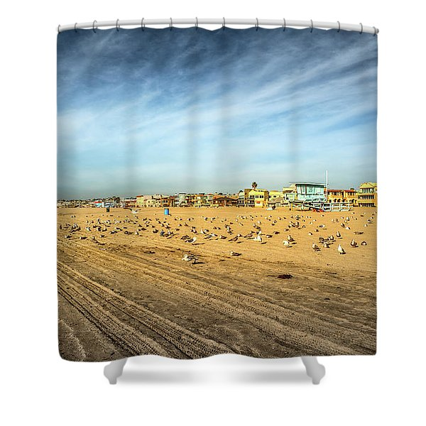 Shower Curtain featuring the photograph Another Seagull Afternoon by Michael Hope