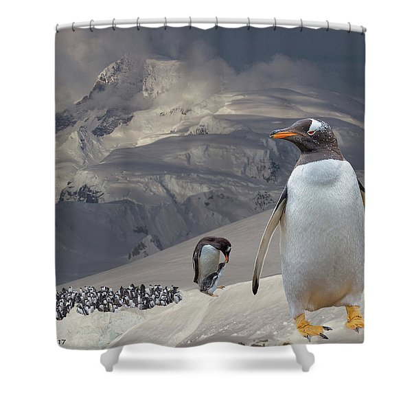 Antarctic Magesty Shower Curtain