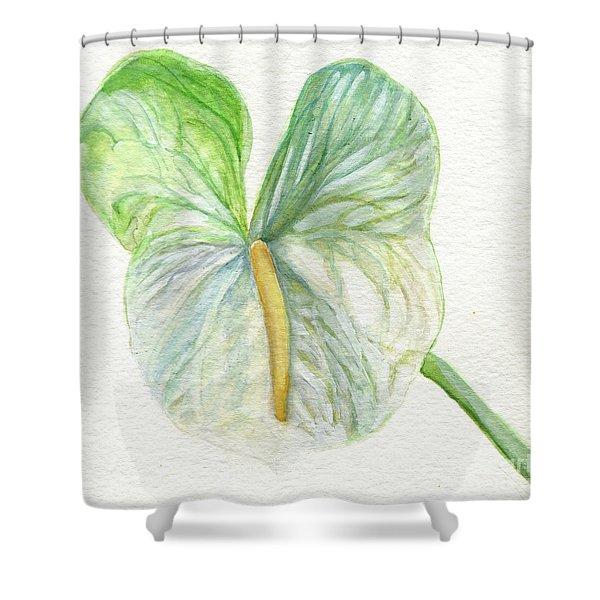 Anthurium Shower Curtain