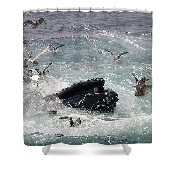 Any Leftovers Shower Curtain