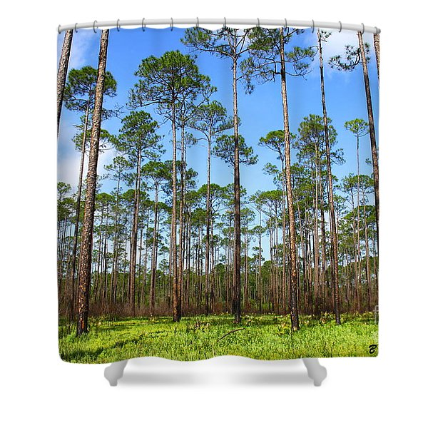 Appalachicola National Forest Shower Curtain