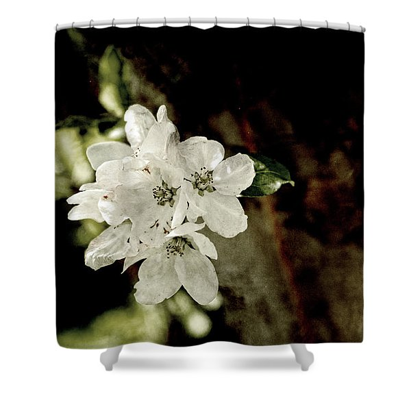 Apple Blossom Paper Shower Curtain