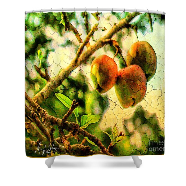 Apple  Season Shower Curtain