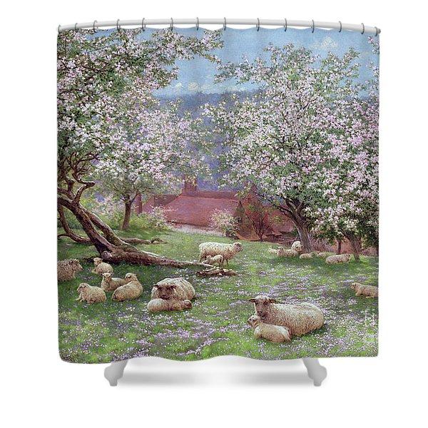 Appleblossom Shower Curtain