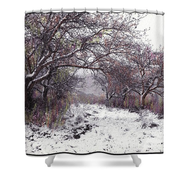 Apples Of The Asquamchumaukee Shower Curtain