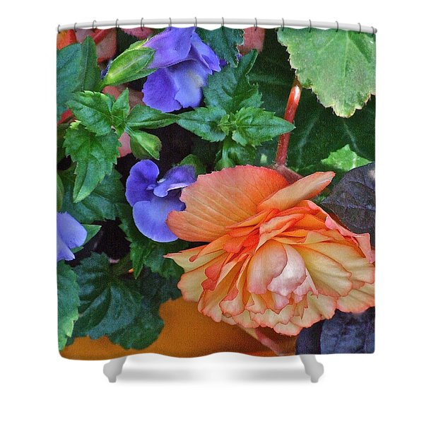 Apricot Begonia 1 Shower Curtain