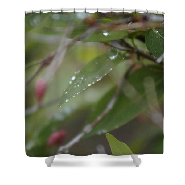 Shower Curtain featuring the photograph April Showers 1 by Antonio Romero