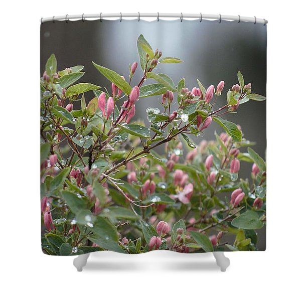 Shower Curtain featuring the photograph April Showers 10 by Antonio Romero