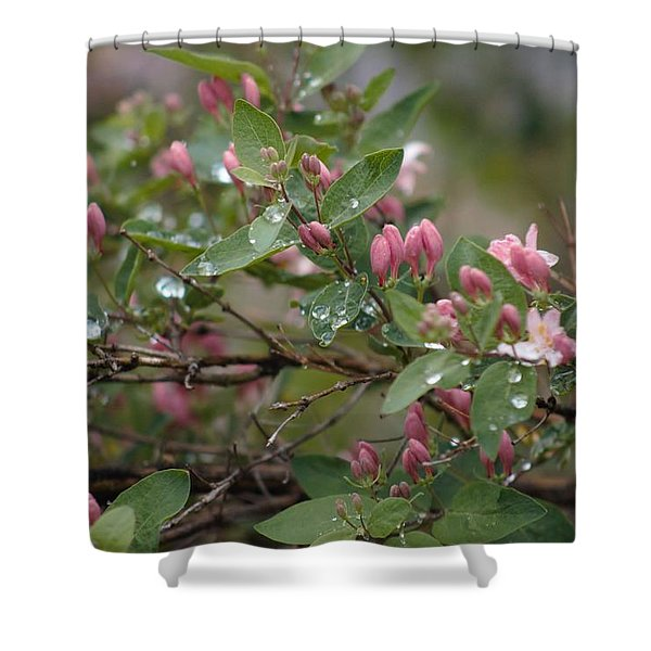 Shower Curtain featuring the photograph April Showers 6 by Antonio Romero