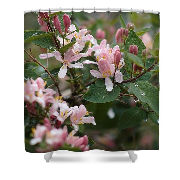 Shower Curtain featuring the photograph April Showers 8 by Antonio Romero
