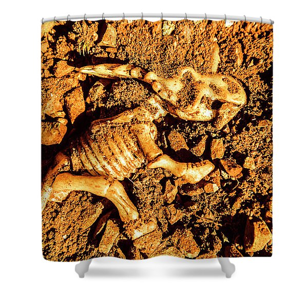 Archaeology Dig Shower Curtain