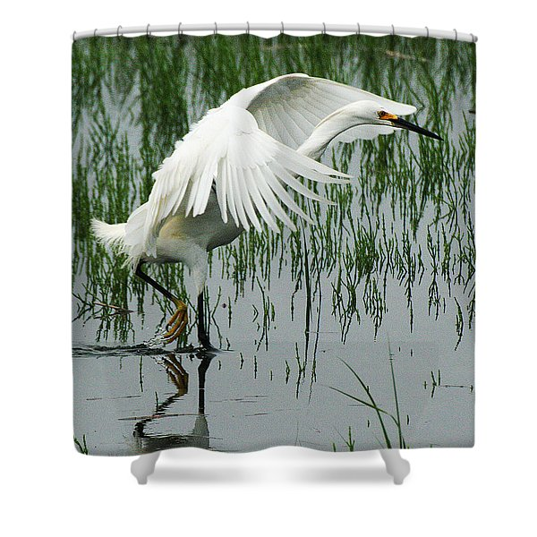 Shower Curtain featuring the photograph Arched Wings by William Selander