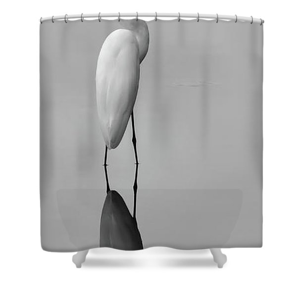 Argent Mirror Black And White Shower Curtain