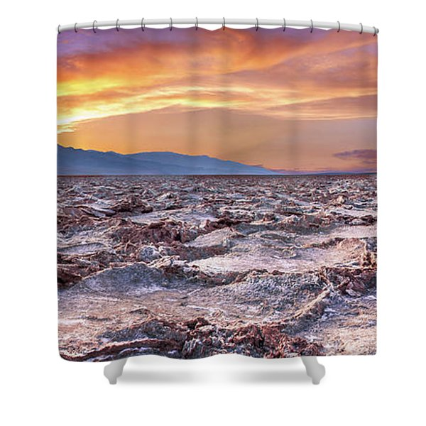 Arid Delight Shower Curtain