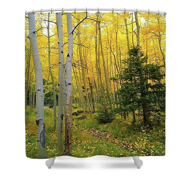 Arizona Fall Shower Curtain