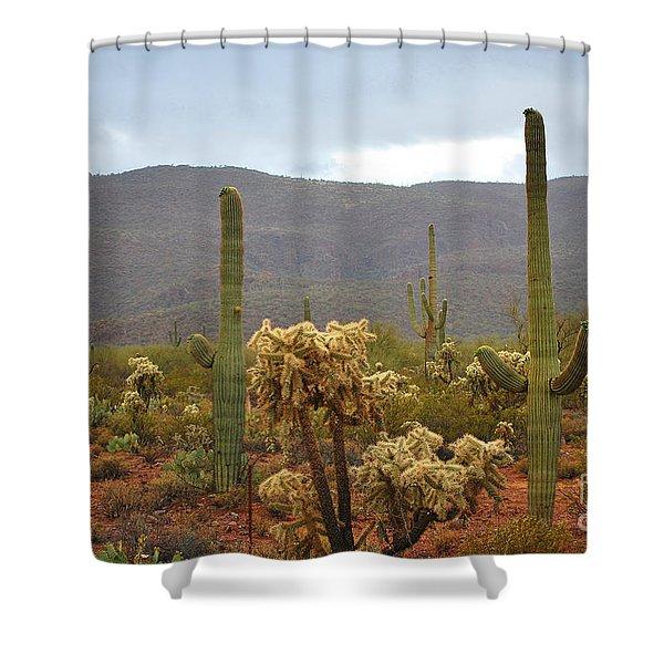 Arizona's Sonoran Desert  Shower Curtain