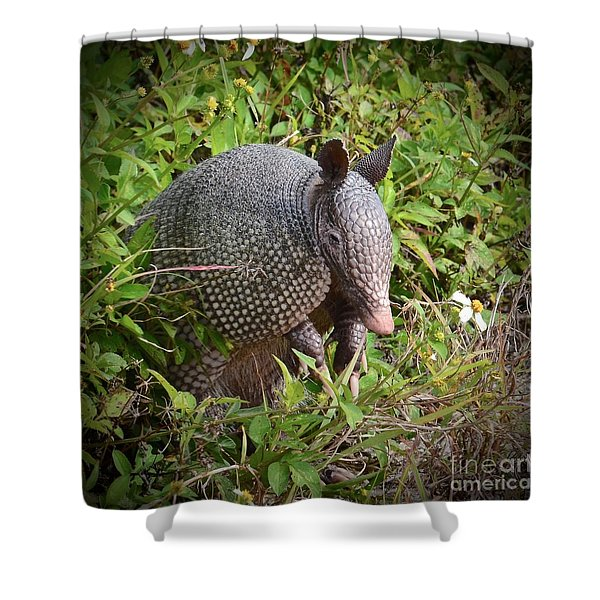 Armadillo And Flower Shower Curtain