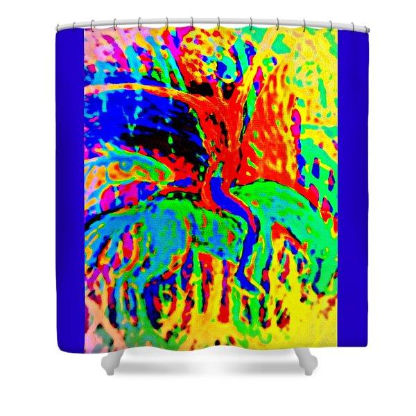 The Artist Of The Burning Rainbow  Shower Curtain