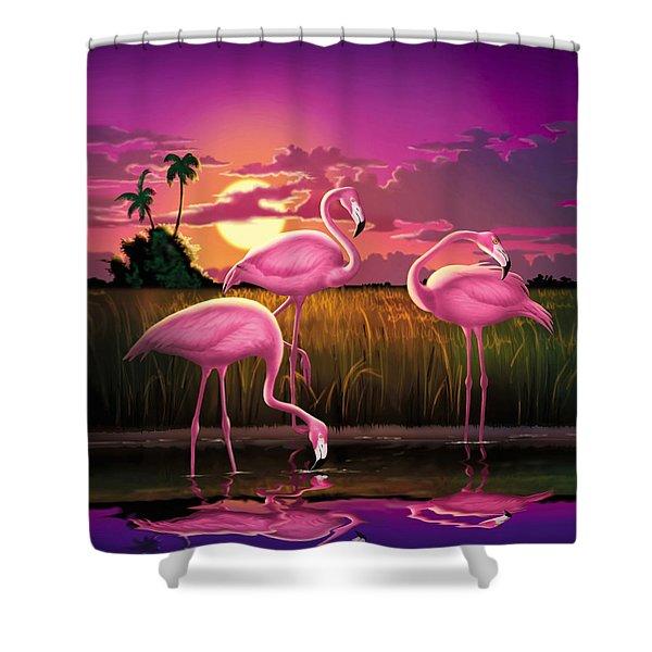 Flamingoes Flamingos Tropical Sunset Landscape Florida Everglades Large Hot Pink Purple Print Shower Curtain
