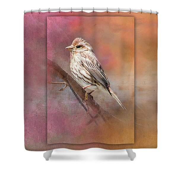 Female Sparrow On Branch Ginkelmier Inspired Shower Curtain