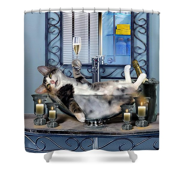 Funny Pet Print With A Tipsy Kitty  Shower Curtain