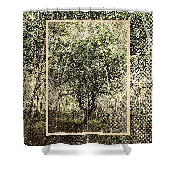 Hand Of God Apple Tree Poster Shower Curtain