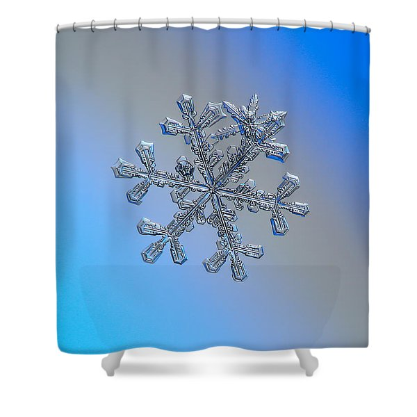 Three-in-one Shower Curtain