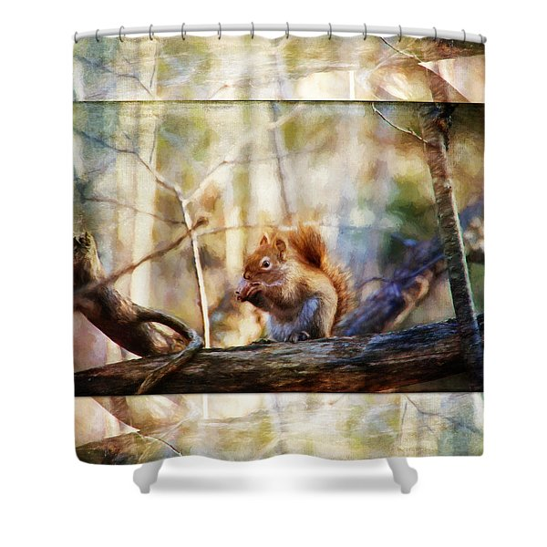 Red Squirrel With Pinecone Shower Curtain