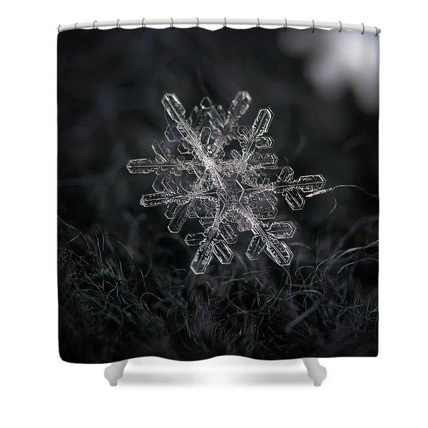 Snowflake Photo - January 18 2013 Grey Colors Shower Curtain