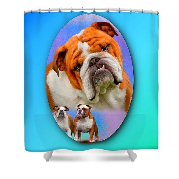 English Bulldog- No Border Shower Curtain