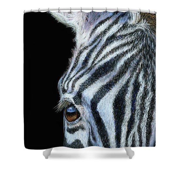 Zebra Detail Shower Curtain