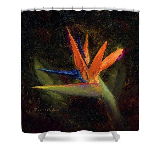Extravagance - Tropical Bird Of Paradise Flower Shower Curtain