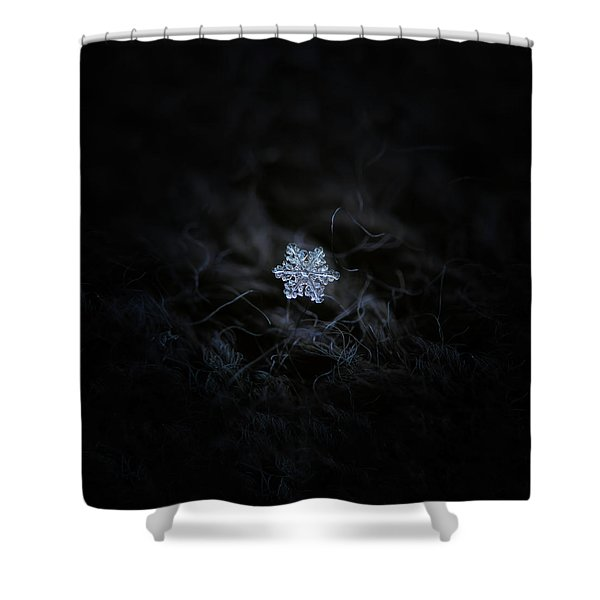 Real Snowflake - 2017-12-07 1 Shower Curtain