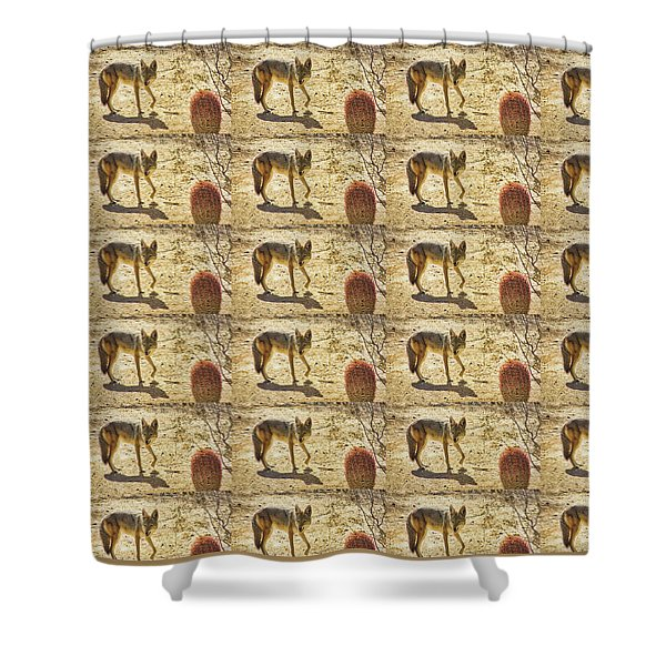Young Coyote And Cactus Shower Curtain