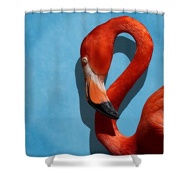 Curves, A Head - A Flamingo Portrait Shower Curtain