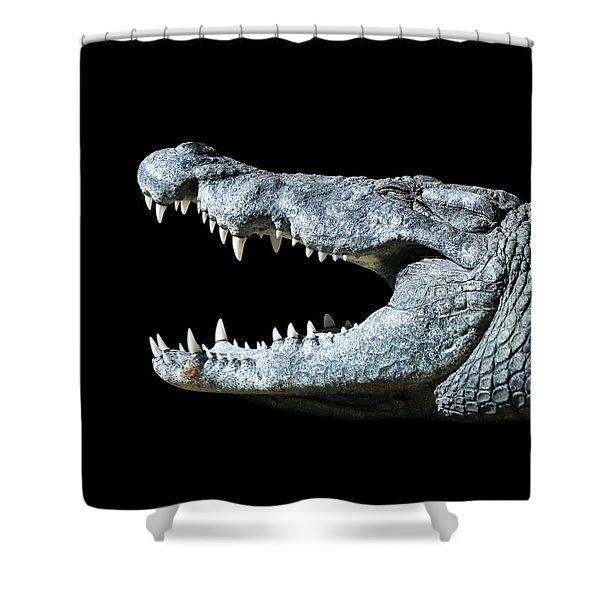 Nile Croco-smile Shower Curtain
