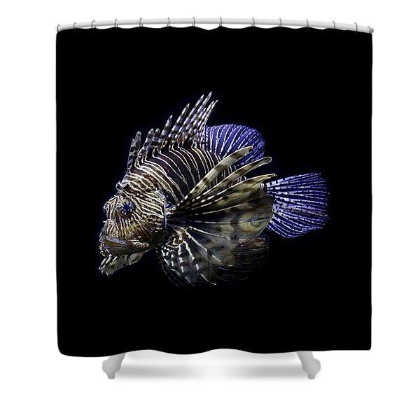 Majestic Lionfish Shower Curtain