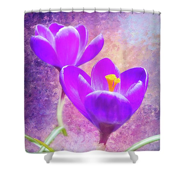 Our First Crocuses This Spring Shower Curtain
