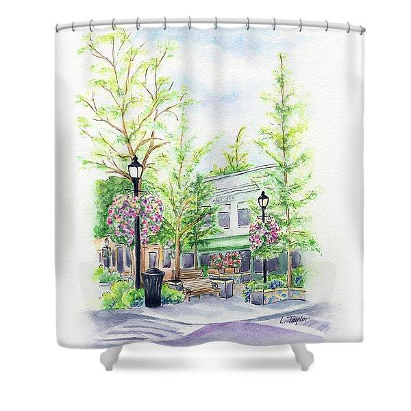 Across The Plaza Shower Curtain