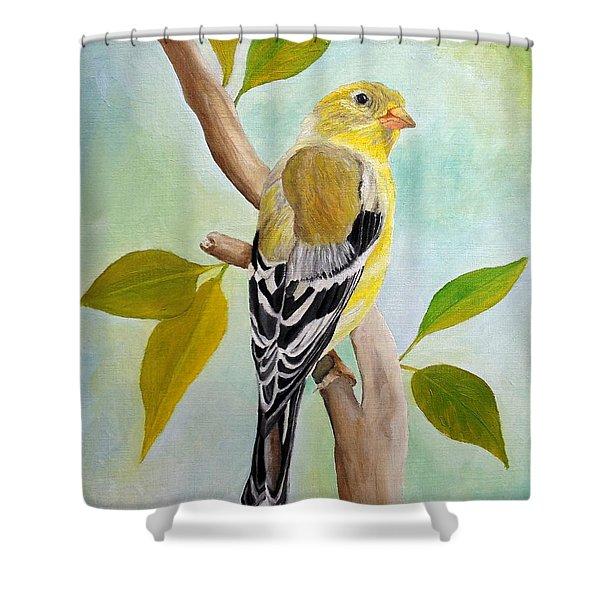 Pretty American Goldfinch Shower Curtain