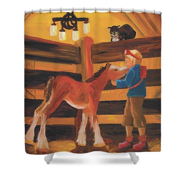 Inside The Barn Shower Curtain