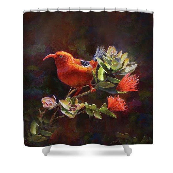 Hawaiian IIwi Bird And Ohia Lehua Flower Shower Curtain