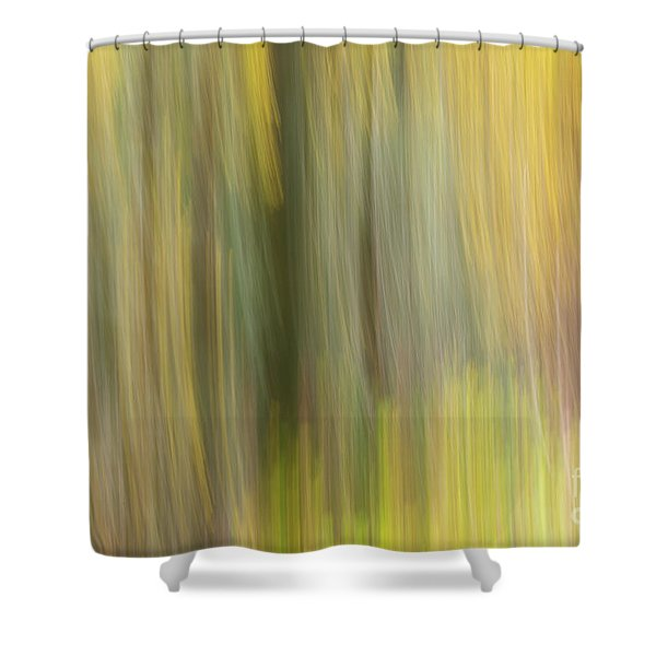 Aspen Blur #2 Shower Curtain