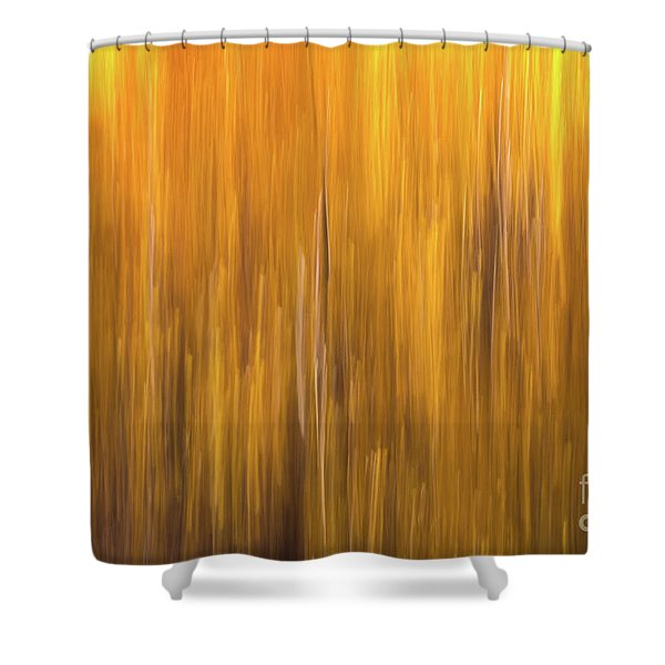 Aspen Blur #5 Shower Curtain