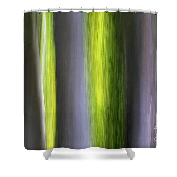 Aspen Blur #7 Shower Curtain