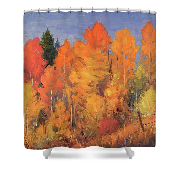 Aspen Riot Shower Curtain