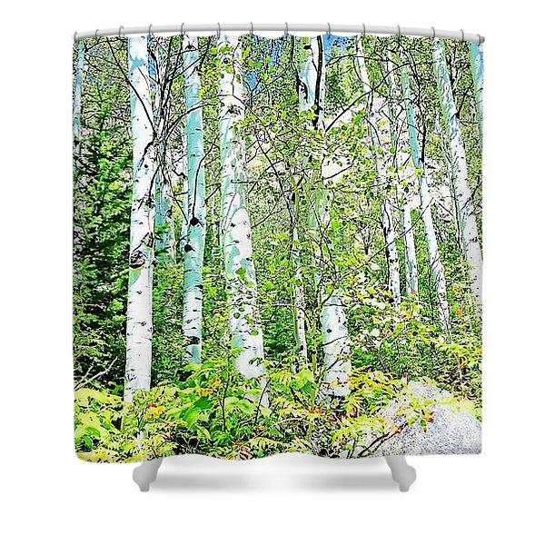 Aspen Splender Steamboat Springs Shower Curtain