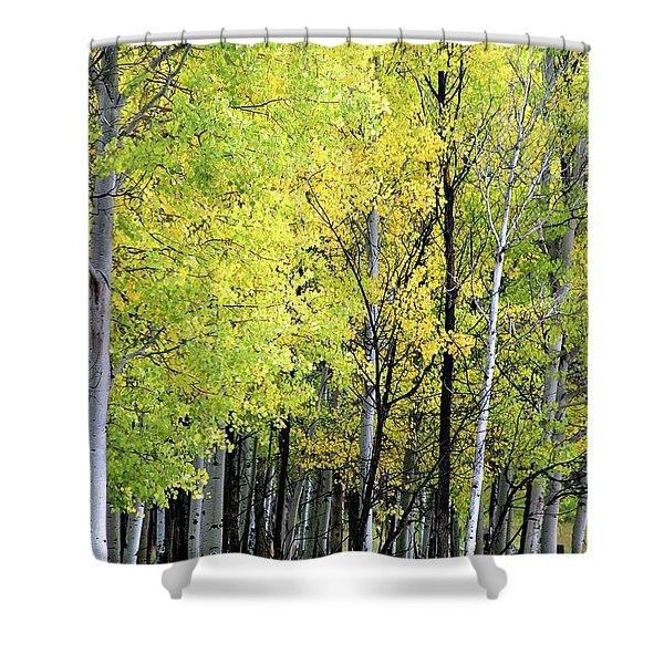 Aspen Splendor Shower Curtain