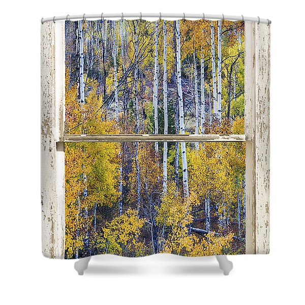 Aspen Tree Magic Cottonwood Pass White Farm House Window Art Shower Curtain